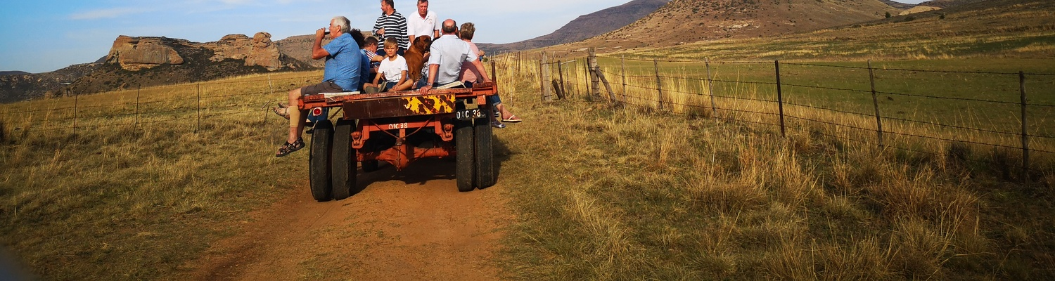 Guests enjoy a sundowner trip up the mountain on a tractor and trailor